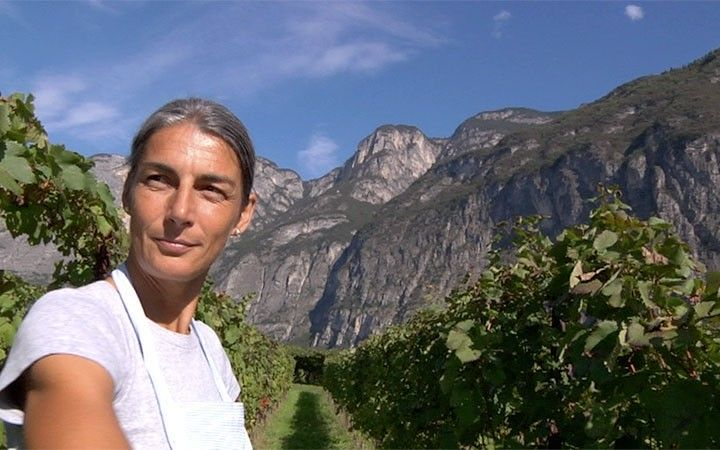 FILMS for FOOD: All Natural – Women who Make Organic Wine